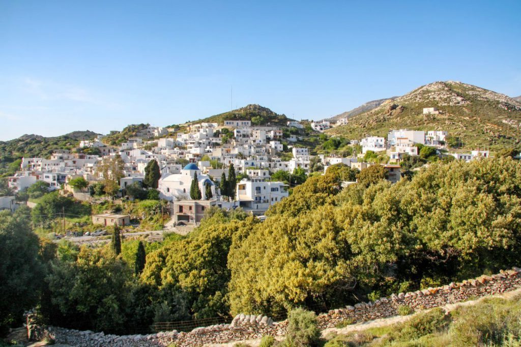 Kinidaros Naxos